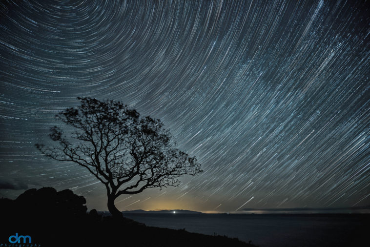 Star Trails ©David Mcalpine