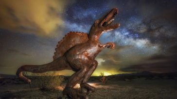 Dinosaur Under the Milky Way ©Chris Maust