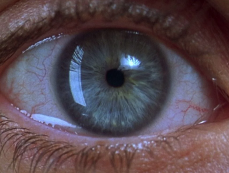 7 Things Every Filmmaker Should know about working with macro lenses.